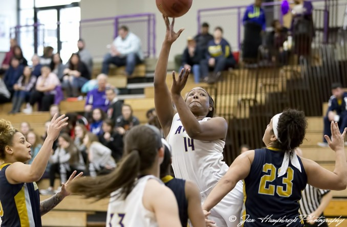 Raven Bunn (14) goes up for a shot against Graceland on Saturday (Photo Credit: Jan Humphreys)