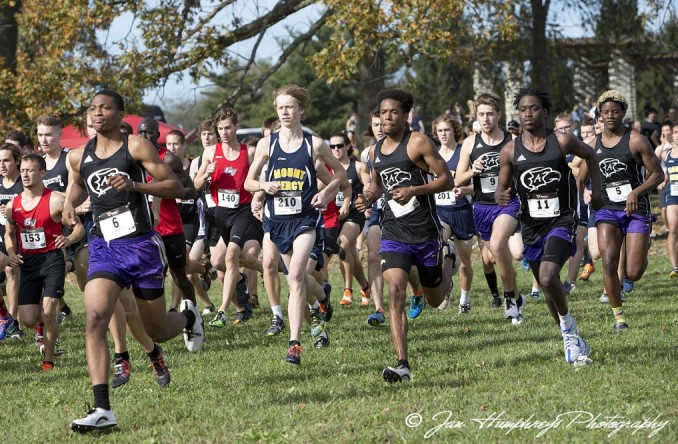 Photo for Men's XC: Eagles finish 11th at Heart XC Championships